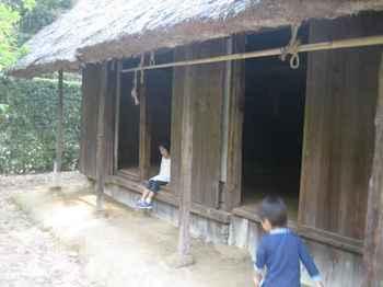 20100628-10.jpg